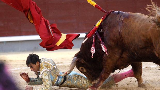 Fortes trata de zafarse del sexto toro, que le propinó una fea voltereta