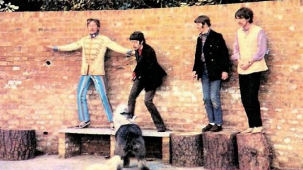 Catpura del videoclip de los Beatles