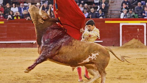 Pablo Aguado triunfa en Valencia y sustituye en Morón