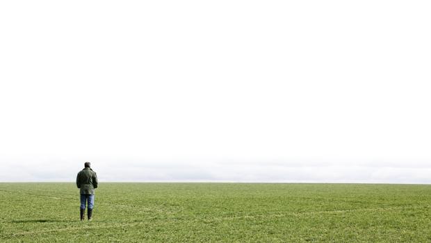 Un hombre contemplando el horizonte en medi del campo
