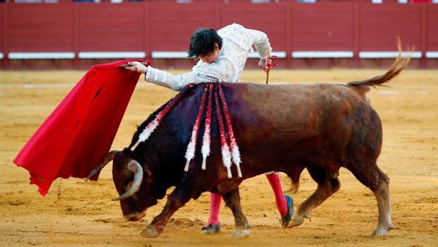 El diestro, Roca Rey durante su faena en la corrida de feria celebrada este viernes en la plaza de toros de Jerez