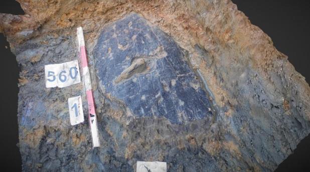 El escudo ha sido encontrado en un pozo