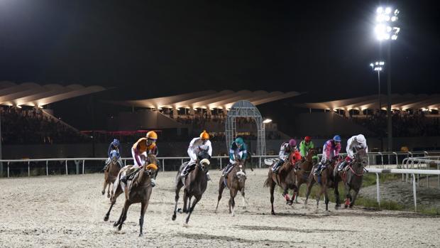 Carrera nocturna en el Hipódromo de la Zarzuela