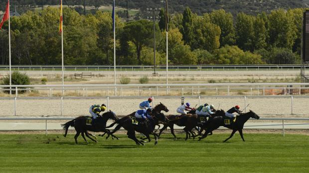 Carreras de caballos:  Tercer «planazo» del Domingo en La Zarzuela