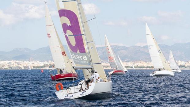 Máxima participación en la Regata Audax Marina