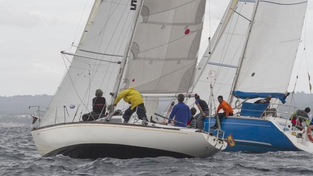 El RCNP se prepara para la 23 edición del Trofeo Bon Vent