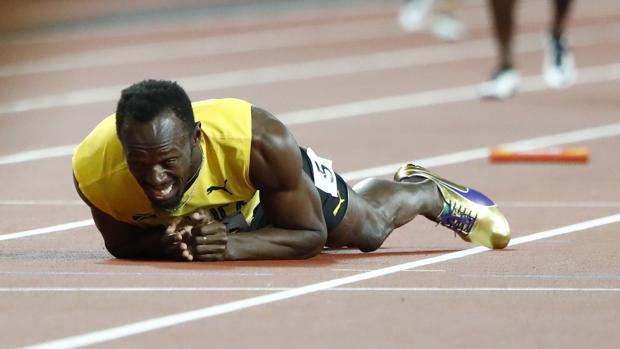 Bolt, en el suelo