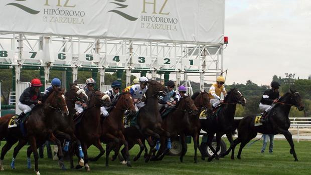 Salida de una carrera en el Hipódromo de la Zarzuela