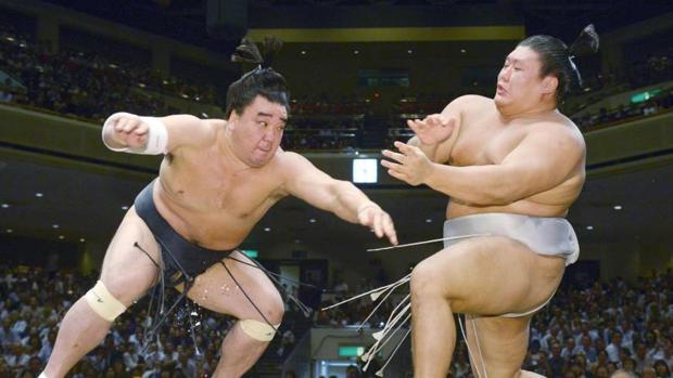 El luchador, durante un combate