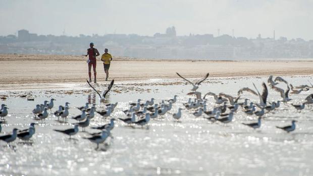 El Desafío Doñana es una de las pruebas más duras de Andalucía.