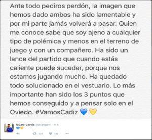 Álvaro García pide perdón en las redes sociales
