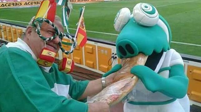 Koki, un caimán como mascota del Córdoba CF.