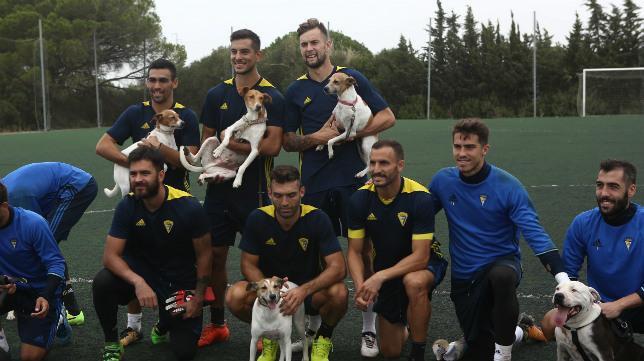 Los jugadores del Cádiz CF se divierten con perros en un entrenamiento.