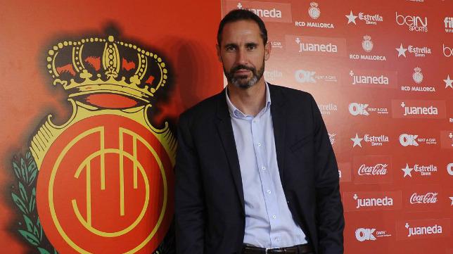 Vicente Moreno, entrenador del RCD Mallorca.
