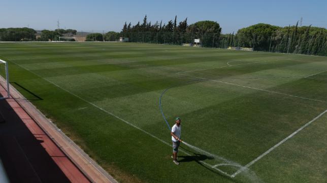 El Rosal acogerá su primer partido de Segunda B.