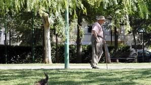 El IPC senior: así afecta la variación de los precios a los mayores de 65 años