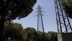 Los fuertes vientos abaratan el precio de la electricidad un 55%