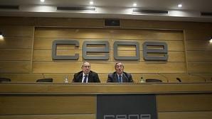 El saldo de empresas creadas en el siglo XXI en España supera las 200.000 nuevas compañías