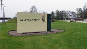Bayer realiza una oferta de adquisición sobre la multinacional de transgénicos Monsanto