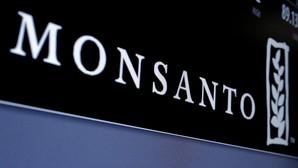 Bayer ofrece 55.200 millones de euros por la multinacional de transgénicos Monsanto