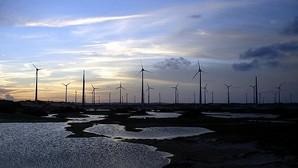 Iberdrola entra en el mercado eólico de Cuba