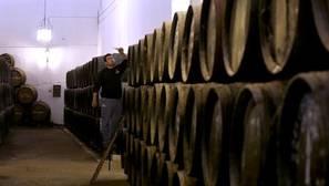 ¿Cuánto gastan en vino los españoles?