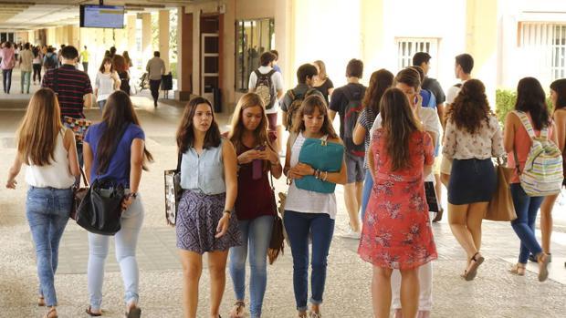 Estudiantes en una universidad de Sevilla