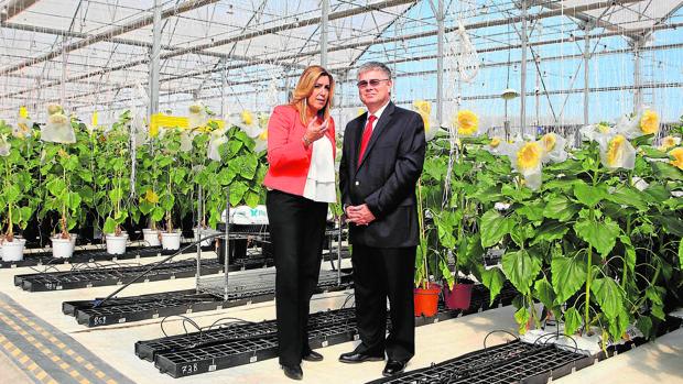 Susana Díaz junto al vicepresidente de DuPont Pioneer, Alejandro Muñoz