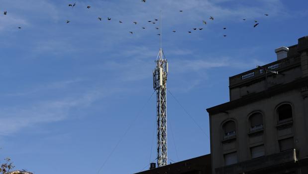 Los recintos y municipios podrán contar con una infraestructura que facilite la elección de redes móviles a los usuarios finales.