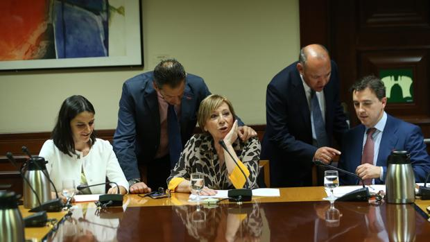 Reunión del pacto de Toledo presidida por Celia Villalobos