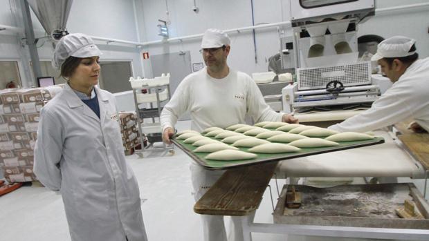 Fábrica de pan congelado de Pansur en Dos Hermanas