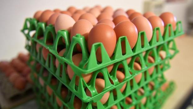 Huevos adulterados con fipronil y retirados del mercado en Rumanía en 2017