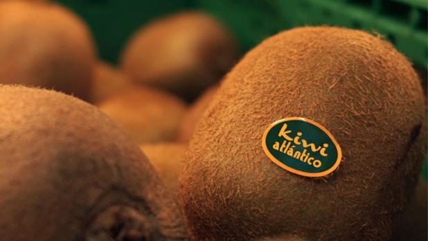 Ya no hace falta abrir los kiwis para comprobar si están o no maduros para su comercialización