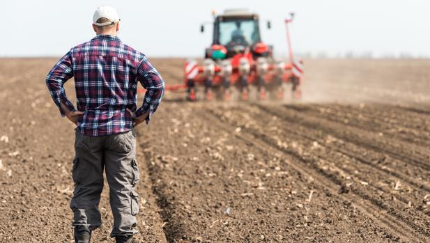 La triste cosecha laboral del campo: 700.000 empleos menos en 30 años