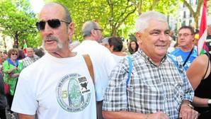 Bildu ofrece a PNV y Podemos sumar para convocar la consulta