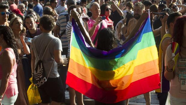 Una mujer sostiene la bandera gay, durante una manifestación