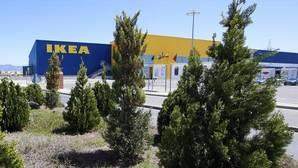 Alicante puede explotar el «efecto Ikea» como revulsivo económico