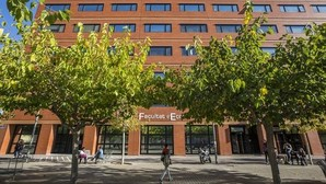 Las universidades públicas valencianas son un 11% más productivas que la media nacional