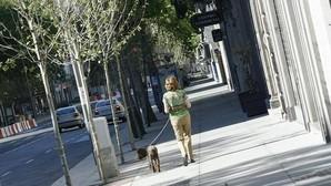 Carmena perdonará las multas por dejar cacas de perros en la calle a cambio de trabajos de barrendero