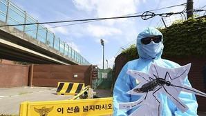 La Comunidad Valenciana registra ya ocho casos de personas afectadas por el virus Zika