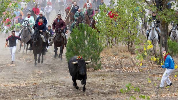 Celebración del Toro de la Vega en Tordesillas