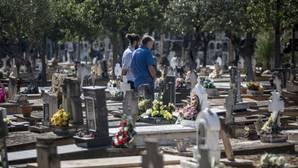 El Consell obligará a hablar valenciano a jardineros y enterradores municipales castellanohablantes
