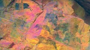 Hallan en Castellón una escena rupestre de caza de jabalíes pintada hace 7.000 años