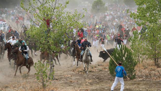 Imagen del Torneo del Toro de la Vega