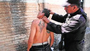 Programa 34: el plan criminal de la Salvatrucha 13 para España