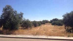 Hallan el cadáver de la mujer desaparecida en Argés a 300 metros de su casa