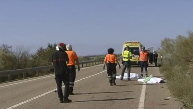 El atropello mortal se produjo en la N-330, a la altura de Botorrita (Zaragoza), el pasado 21 de agost