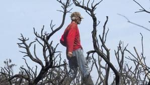 Los efectos del fuego sobre la vegetación pueden ser «letales»