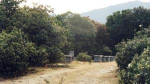 Cinco rutas para conectar con la naturaleza en Madrid