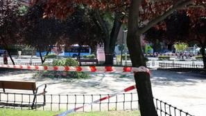 Casi 500 calles de Madrid sufrirán cortes esta semana por talas y podas